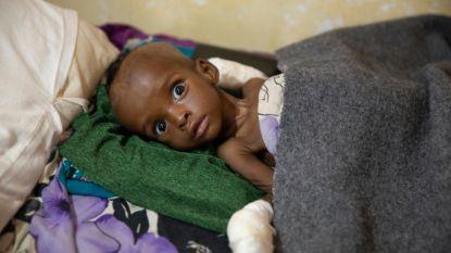Hulporganisaties slaan alarm: honger rukt op in Zuidelijk Afrika, vooral kinderen hard getroffen