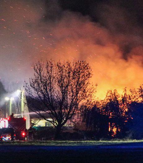 Tientallen kalveren overleven boerderijbrand in Swifterbant niet: 'Daar stond de toekomst van ons bedrijf'