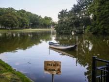 Dode eenden in Warandevijver in Helmond: gemeente onderzoekt de oorzaak