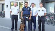 Mechelse herder Mauro versterkt politiekorps