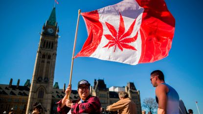 Canadese senaat stemt voor legalisering marihuana