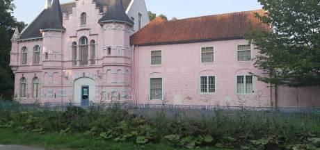 Roze Kasteel zou zeker níet meer roze worden; maaarr.......