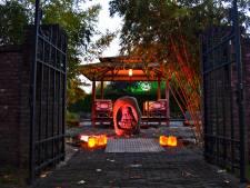 Licht maakt mysterie in de Tuinen van Appeltern