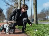 Hondenbaasjes maken de straten van de stad schoon