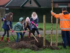 Eigen boomplantdag in Montferland
