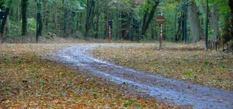 Fermeture des parcs à Bruxelles en raison des fortes rafales de vent