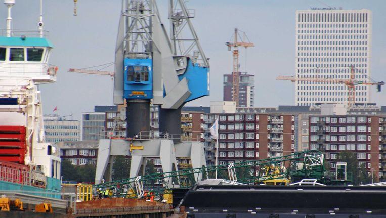 In de Rotterdamse haven begint personeel uit de containersector donderdagmiddag met staken. Beeld anp