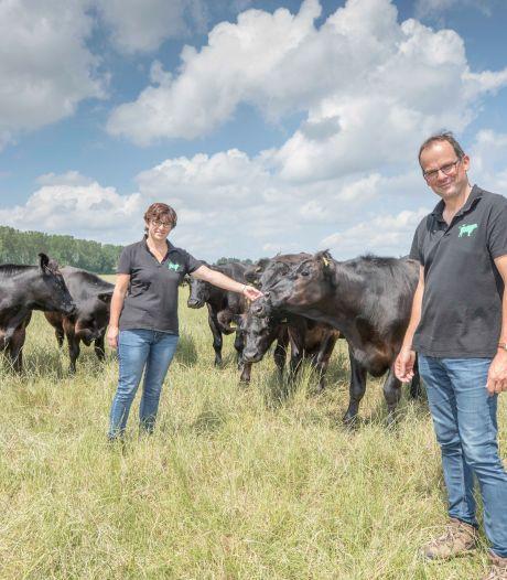 Vleesliefhebbers vinden de weg terug naar de Zeeuwse boerderijen