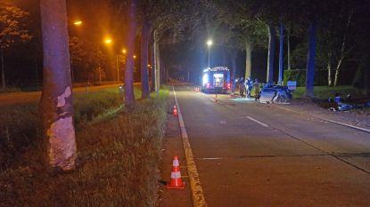 24-jarige verpleegster overleden na verkeersongeval in Maldegem