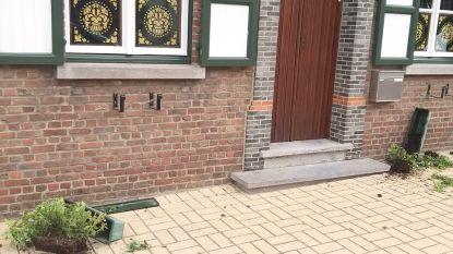 Betrapt (maar nog niet opgespoord): jongeman die tientallen bloembakken vernielt in Michelbeke