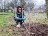 Planten in de herfst spaart je werk én (veel) geld uit: onze tuinexperte legt uit hoe je er vandaag nog aan begint