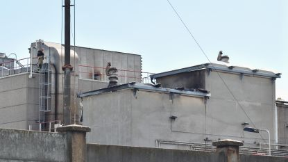 Defecte halogeenlamp veroorzaakt  kleine dakbrand bij Umicore