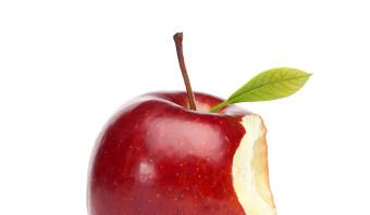 Gaat 'Adam en Eva' over de zonde?