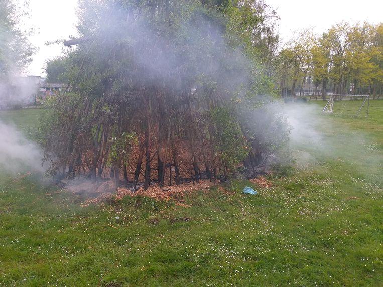 Het wilgenhutje liep brandschade op, maar zal zich allicht herstellen.