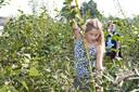 Kinderen struinen rond in een tiny forest.