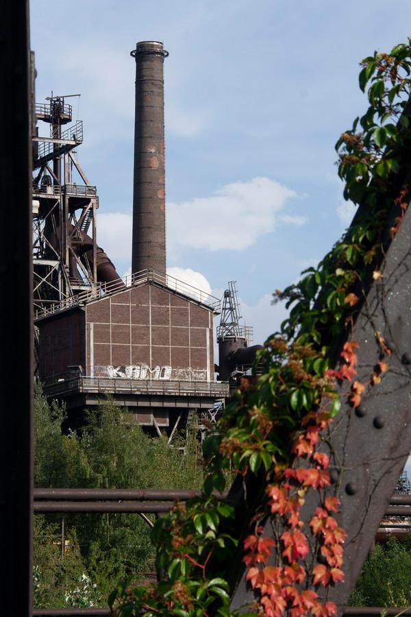 Groen rukt op tussen de oude fabrieken in het Landschaftspark.