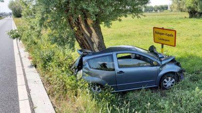 Bestuurder slechts lichtgewond na spectaculair ongeval: auto duikt in dieperik