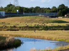 Aanpak extreme regenval en droogte in Wierden