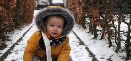 Zo ziet Brabant eruit onder een deken van sneeuw