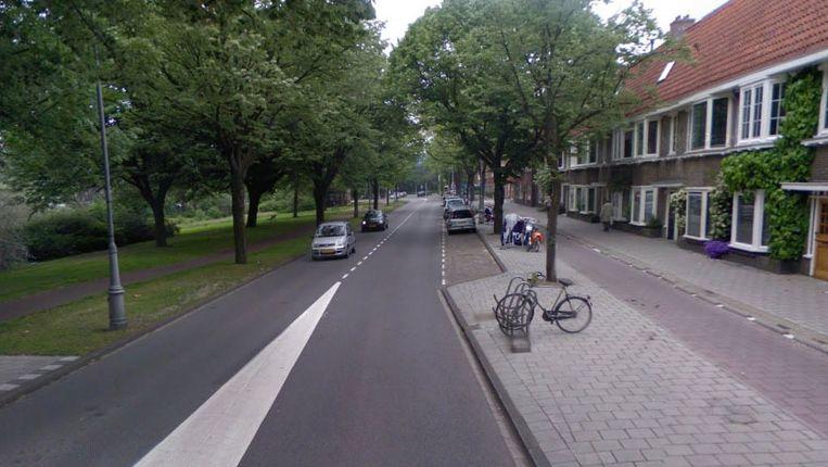 Het Galileiplantsoen in Watergraafsmeer (Amsterdam-Oost). Beeld ANP