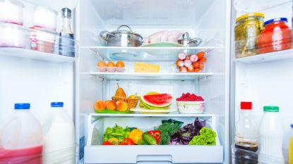 Deze mini koelkasten zijn ideaal voor een studentenkot