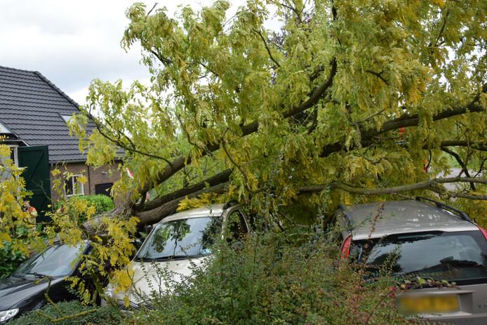 Omgewaaide boom valt op drie auto's in Arnhem.