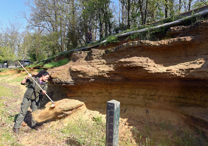 Boswachter Anouk Pattipeilohij bezig met het verwijderen van zand.