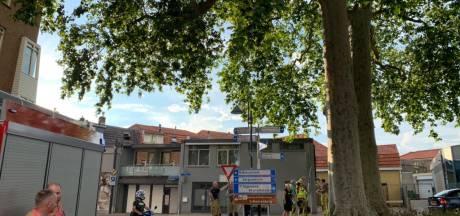Wandelaarsgeluk: enorme takken uit boom vallen nét niet op hun hoofd