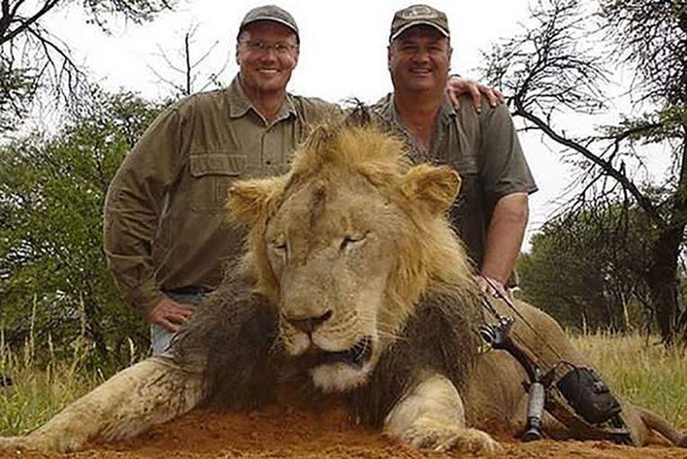 Palmer (links) met de dode leeuw Cecil.