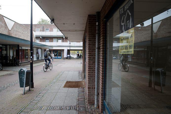 Leegstaande winkelpanden, fietsers en een flink verouderd uiterlijk. De Polsbroekpassage is alles behalve de fraaie toegang tot de stad voor voetgangers die het zou moeten zijn.