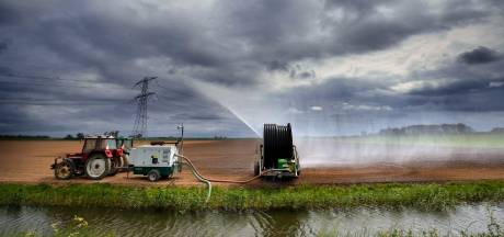 Brabantse organisaties waarschuwen door droogte: 'Elke druppel telt nu, hou op met water verspillen'