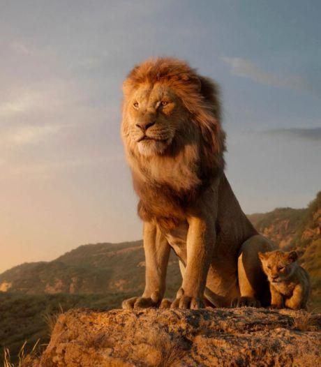 """Disney annonce une suite au """"Roi Lion"""""""