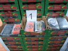 Voor 60 miljoen aan cocaïne in containers uit Brazilië