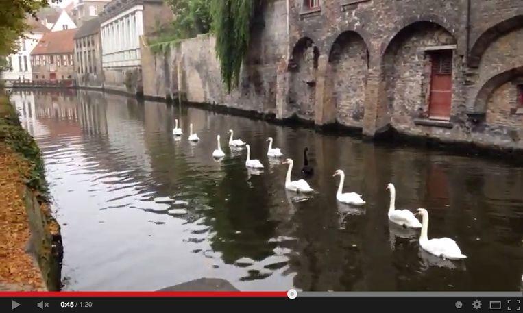Een screenshot van een video van Russische toeriste Olga Gouskova.