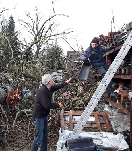Dakpanverkoper Geffen heeft het druk, ook met die omgewaaide boom op zijn pannenvoorraad