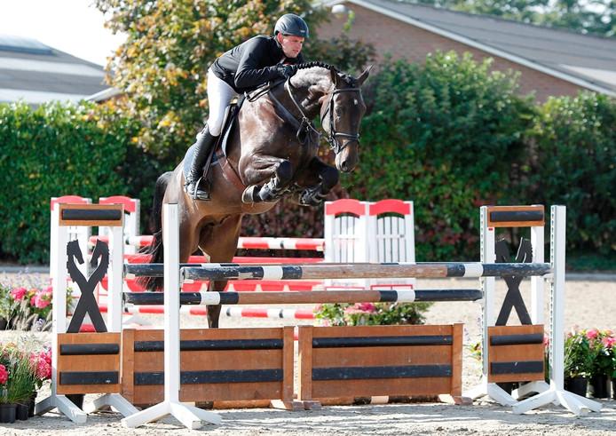 Django, het paard dat heel even eigendom van was profvoetballer Leroy Fer