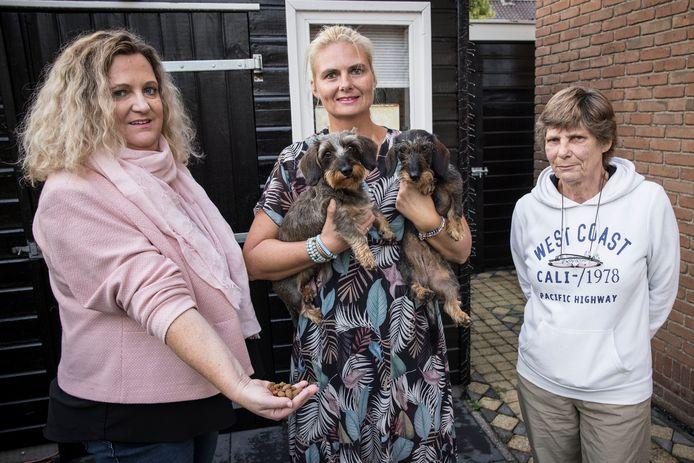 Hondeneigenaren Suzanne Hendriks , Patricia Wesdorp , Corrie Schenk en honden Saar en Iris .