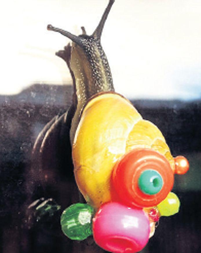 Tinkebell beplakte meer dan duizend slakken met kraaltjes.