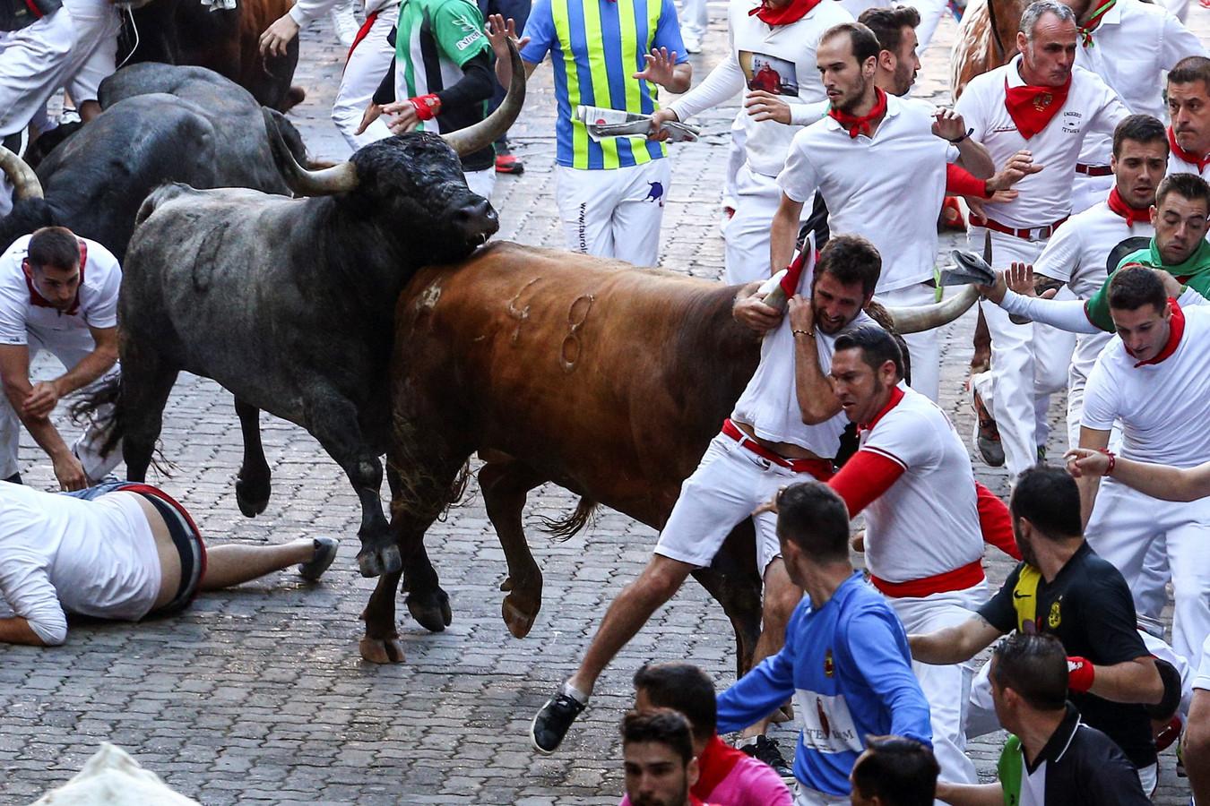 Stierenrennen in Pamplona
