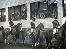 Liefde voor paarden is a way of life 24/7 op De Roosberg in Bavel