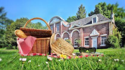 Picknick in het kasteelpark voor Vlaanderen Feest