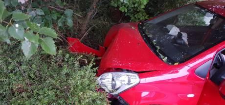 Auto belandt in struiken in Hengelo, bestuurder levert rijbewijs in