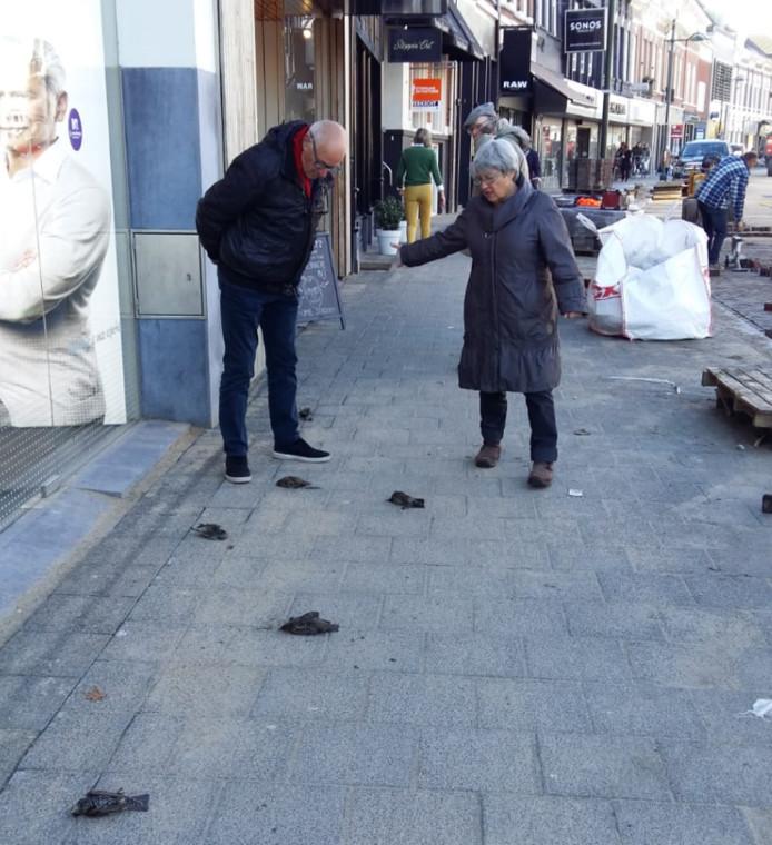 Spreeuwen liggen dood op de stoep in de Wilhelminastraat in Breda.