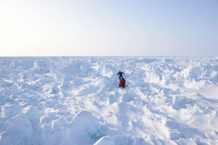 In 2014 op weg van de Noordpool naar Canada. Beeld