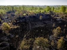 Grootste Nederlandse natuurbrand ooit onder controle, nablussen kan nog weken duren