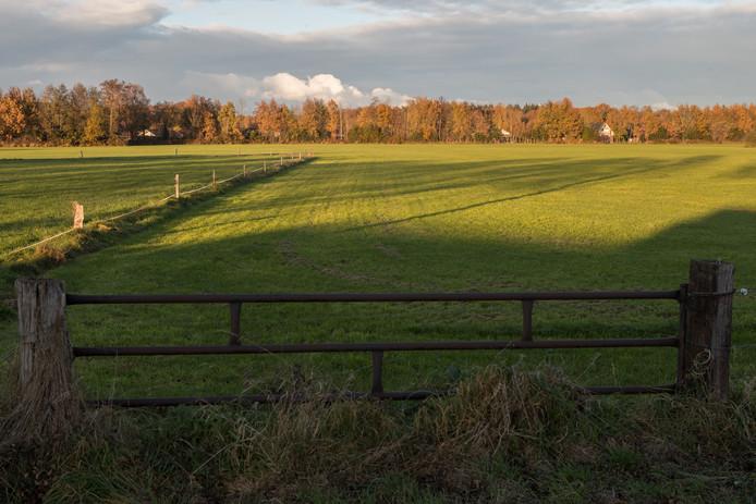 Hier aan de Molenweg zou een nieuwe woonwijk kunnen komen.