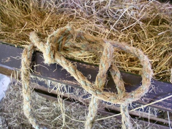 Het touw dat nog aan zijn hoorntjes geknoopt zat.