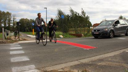 Groen Ronse wil extra signalisatie aan oversteek fietspad Savooistraat