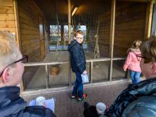 Negentig wandelaars op pad voor  Koppie-Au: de strijd tegen hersentumoren