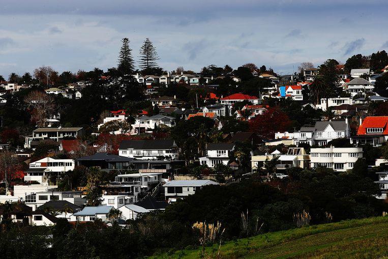 Huizen in Auckland doen het goed bij Chinezen en Amerikanen. Beeld Getty Images